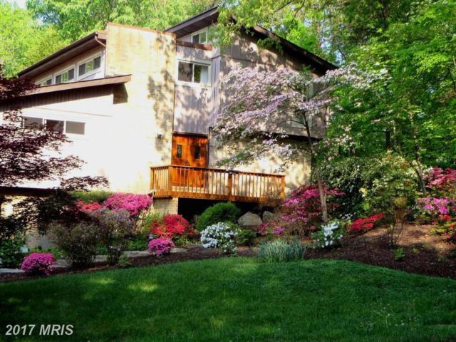 10702 Great Arbor Drive, Potomac, MD 20854 (#MC10075399) :: LoCoMusings