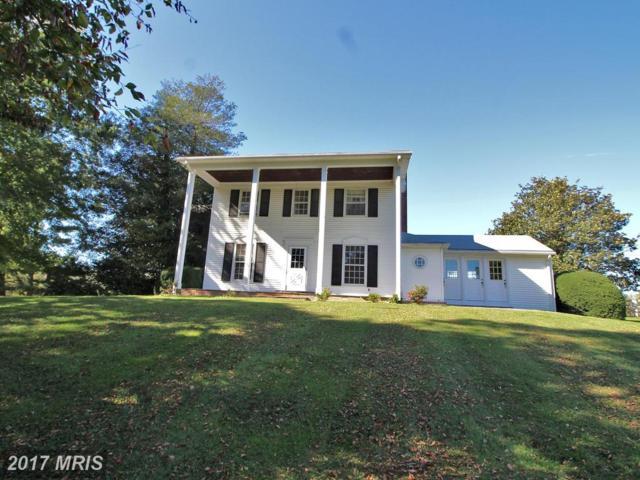 24300 Peach Tree Road, Clarksburg, MD 20871 (#MC10077087) :: The Sebeck Team of RE/MAX Preferred