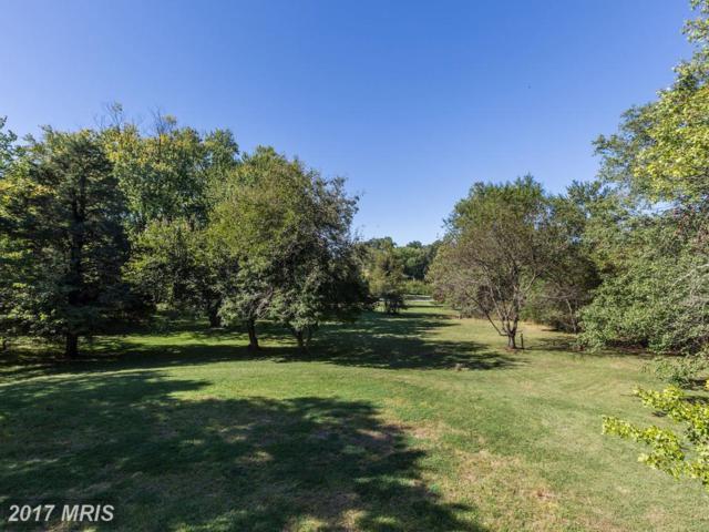 10700 River Road, Potomac, MD 20854 (#MC10079262) :: Pearson Smith Realty
