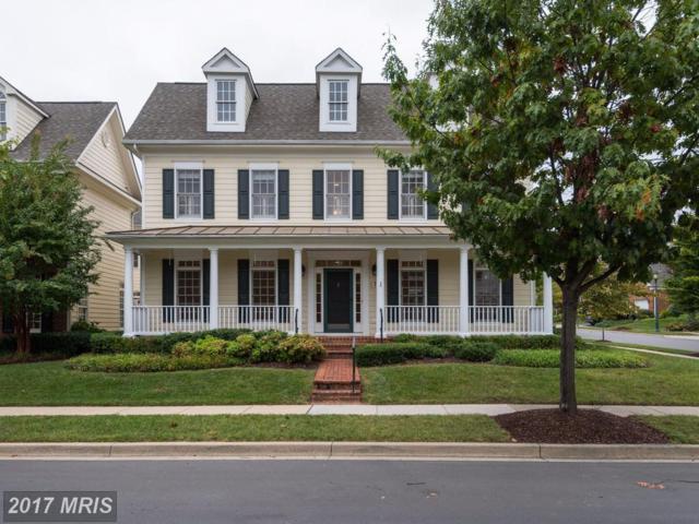 702 Oak Knoll Terrace, Rockville, MD 20850 (#MC10080851) :: LoCoMusings