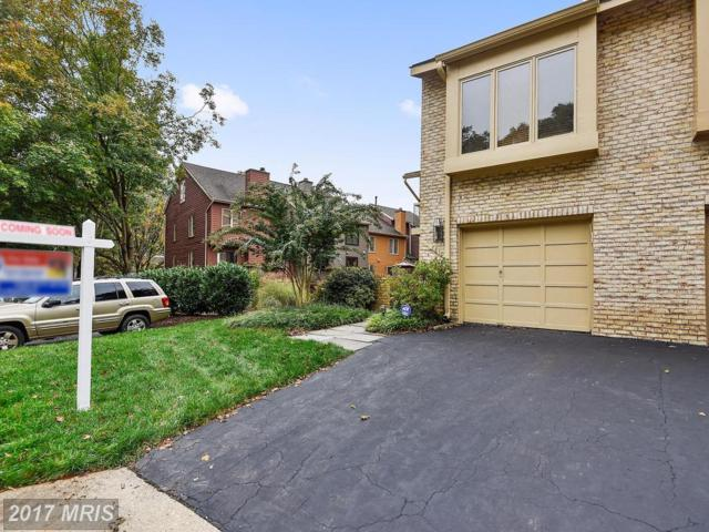 7810 Whiterim Terrace, Potomac, MD 20854 (#MC10081745) :: The Sebeck Team of RE/MAX Preferred