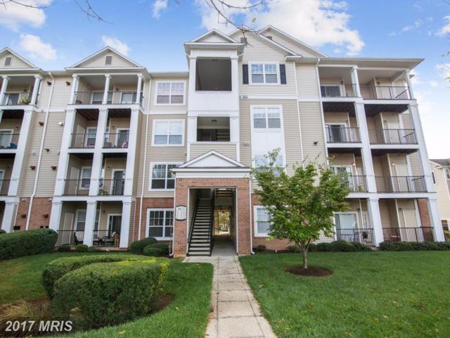 19625 Galway Bay Circle #202, Germantown, MD 20874 (#MC10083453) :: The Sebeck Team of RE/MAX Preferred
