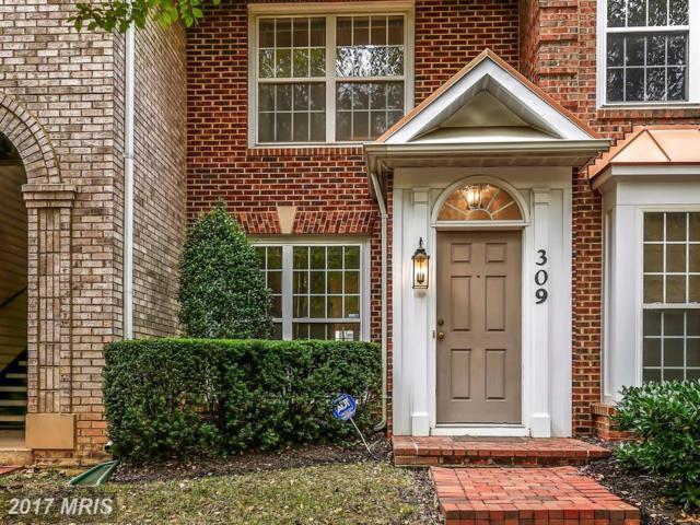 309 Fallsgrove Drive #61, Rockville, MD 20850 (#MC10084562) :: MidAtlantic Real Estate