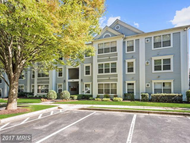 14101 Fall Acre Court #5, Silver Spring, MD 20906 (#MC10085229) :: Gary Walker at RE/MAX Realty Services