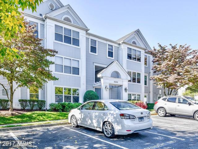 2602 Squaw Valley Court 1-2, Silver Spring, MD 20906 (#MC10086435) :: LoCoMusings