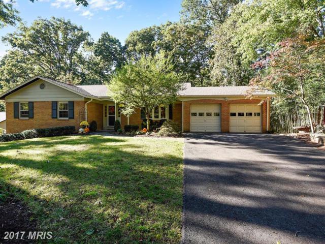 12602 Davan Drive, Silver Spring, MD 20904 (#MC10086774) :: Dart Homes