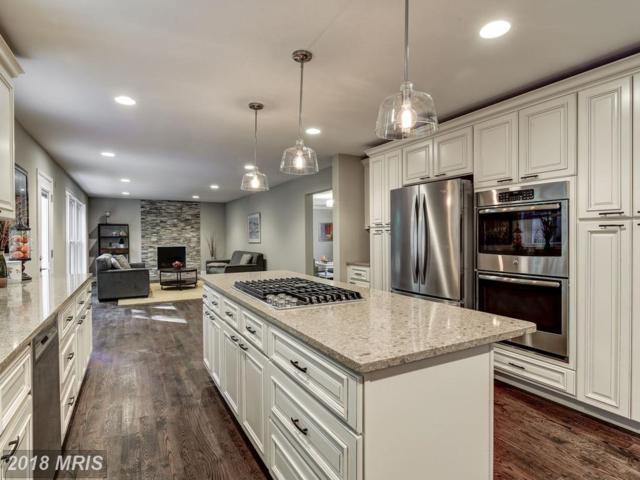 7713 Hackamore Drive, Rockville, MD 20854 (#MC10087007) :: Browning Homes Group