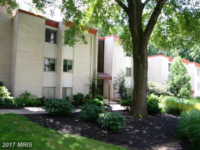 14428 Parkvale Road #5, Rockville, MD 20853 (#MC10087033) :: Dart Homes