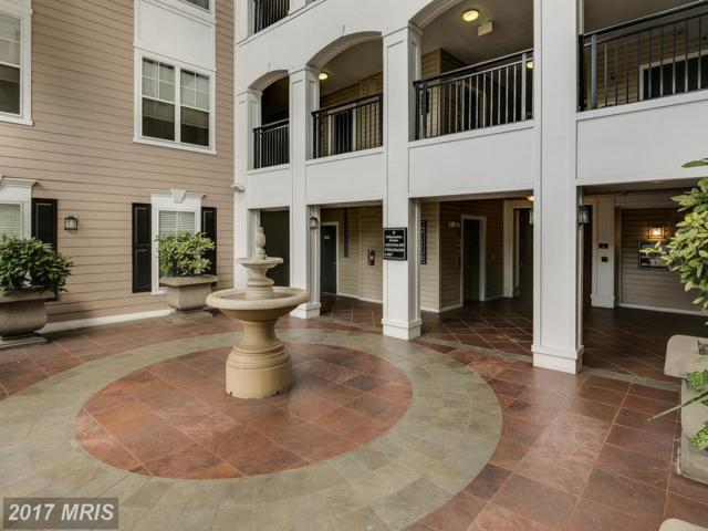 501 Hungerford Drive #215, Rockville, MD 20850 (#MC10087253) :: ReMax Plus