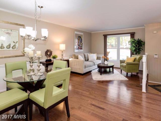 10720 Pine Haven Terrace, North Bethesda, MD 20852 (#MC10097122) :: The Daniel Register Group