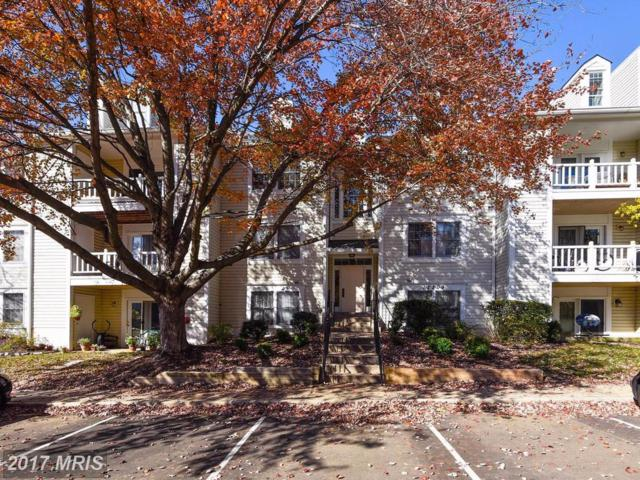 12209 Eagles Nest Court C, Germantown, MD 20874 (#MC10097124) :: Pearson Smith Realty
