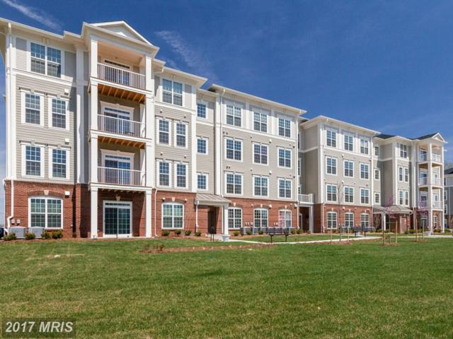 3825 Doc Berlin Drive #46, Silver Spring, MD 20906 (#MC10099699) :: LoCoMusings