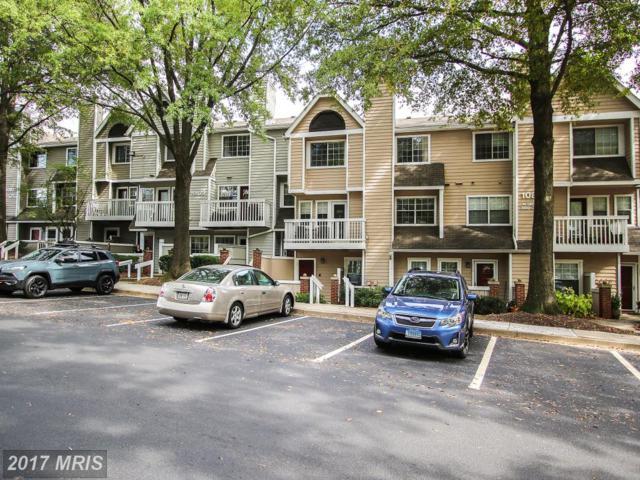 10823 Hampton Mill Terrace #1102, Rockville, MD 20852 (#MC10101360) :: LoCoMusings