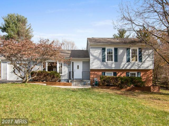 19940 Wild Cherry Lane, Germantown, MD 20874 (#MC10103456) :: The Maryland Group of Long & Foster