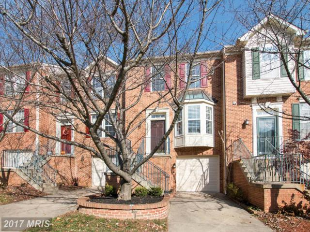 13636 Hayworth Drive, Potomac, MD 20854 (#MC10105578) :: The Daniel Register Group