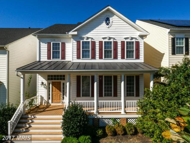 23110 Yellowwood Drive, Clarksburg, MD 20871 (#MC10106276) :: Ultimate Selling Team