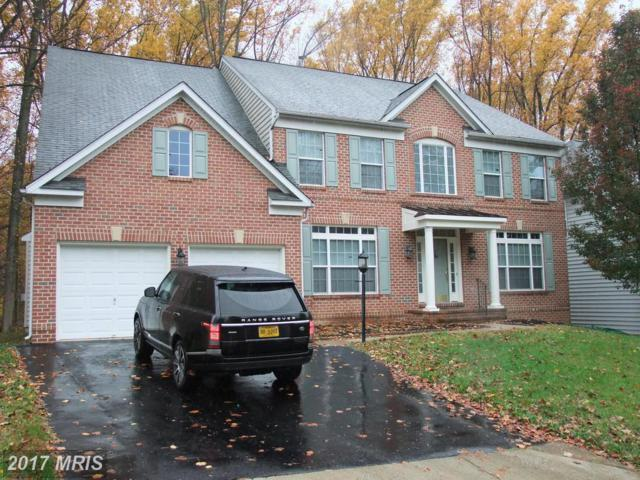 14404 Bonifant Park Place, Silver Spring, MD 20906 (#MC10106739) :: Arlington Realty, Inc.