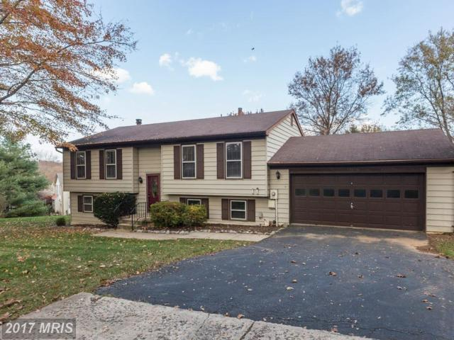 13805 Wanegarden Drive, Germantown, MD 20874 (#MC10107286) :: The Maryland Group of Long & Foster
