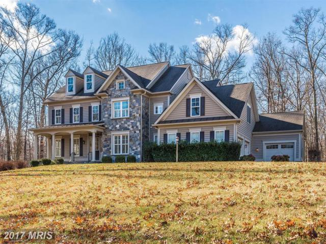 10124 Sycamore Hollow Lane, Germantown, MD 20876 (#MC10111214) :: The Sebeck Team of RE/MAX Preferred