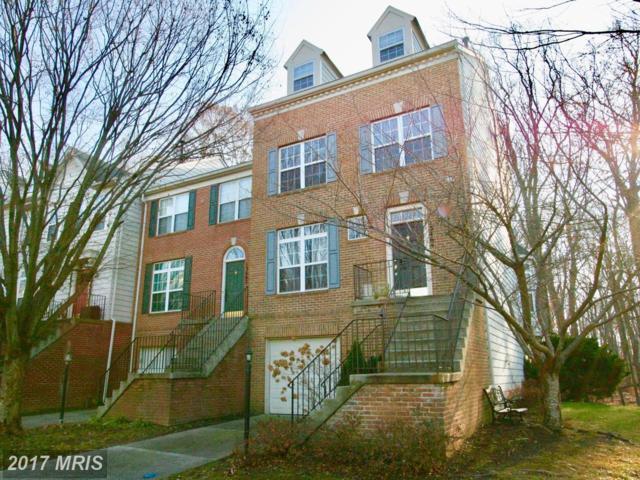 13464 Ansel Terrace, Germantown, MD 20874 (#MC10119189) :: The Katie Nicholson Team