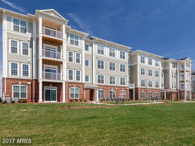 3911 Doc Berlin Drive #16, Silver Spring, MD 20906 (#MC10125381) :: Pearson Smith Realty