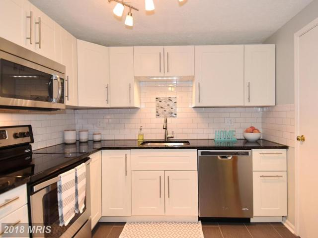 300 Legato Terrace, Silver Spring, MD 20901 (#MC10129923) :: Pearson Smith Realty