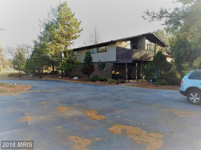 1731 Briggs Chaney Road, Silver Spring, MD 20905 (#MC10131839) :: Pearson Smith Realty