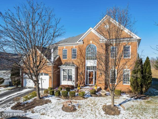 14114 Chinkapin Drive, Rockville, MD 20850 (#MC10132029) :: Pearson Smith Realty