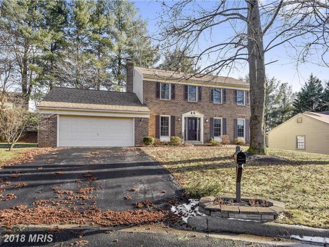 12803 Tinstone Court, Silver Spring, MD 20904 (#MC10132099) :: Pearson Smith Realty