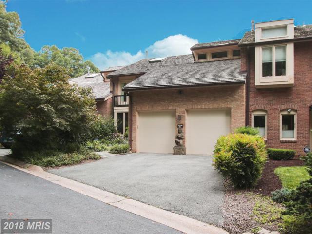 6105 Davenport Terrace, Bethesda, MD 20817 (#MC10132562) :: Pearson Smith Realty