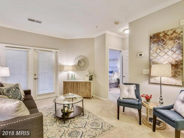 11800 Old Georgetown Road #1102, Rockville, MD 20852 (#MC10133856) :: The Withrow Group at Long & Foster