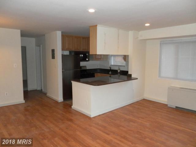 116 Lee Avenue #105, Takoma Park, MD 20912 (#MC10133959) :: The Withrow Group at Long & Foster