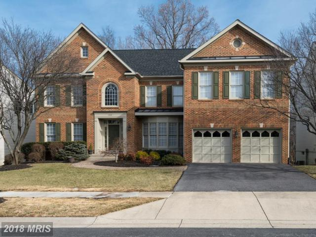 13309 Morning Field Way, Potomac, MD 20854 (#MC10137694) :: The Daniel Register Group