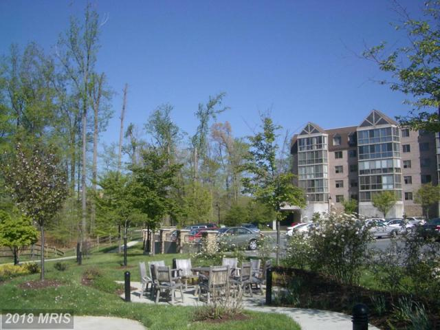 2901 Leisure World Boulevard #505, Silver Spring, MD 20906 (#MC10139705) :: ExecuHome Realty
