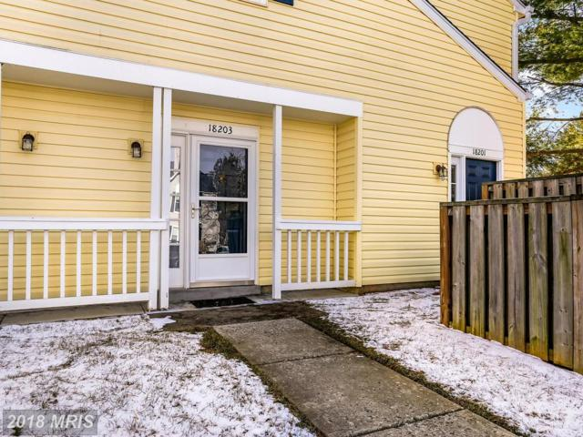 18203 Rolling Meadow Way #220, Olney, MD 20832 (#MC10139970) :: Pearson Smith Realty