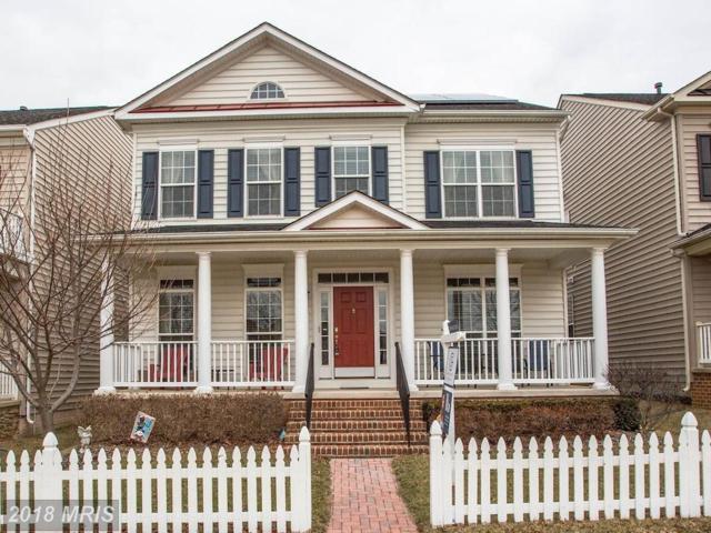 23118 Mistflower Drive, Clarksburg, MD 20871 (#MC10153685) :: Dart Homes