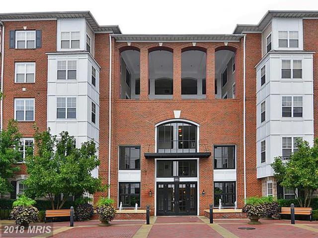501 Hungerford Drive #366, Rockville, MD 20850 (#MC10155627) :: The Gus Anthony Team