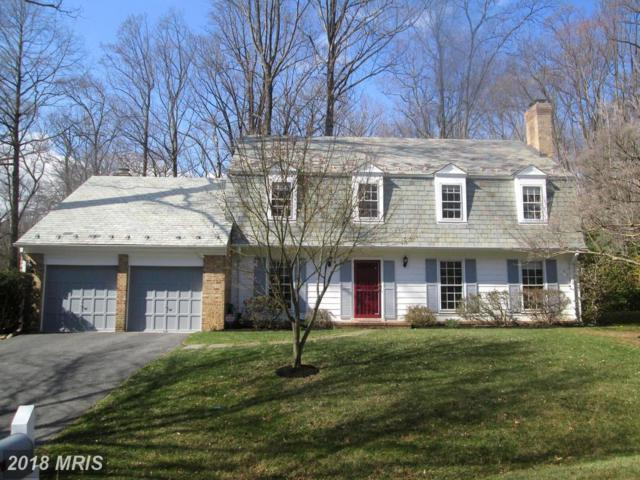 10403 Windsor View Drive, Potomac, MD 20854 (#MC10174435) :: The Withrow Group at Long & Foster
