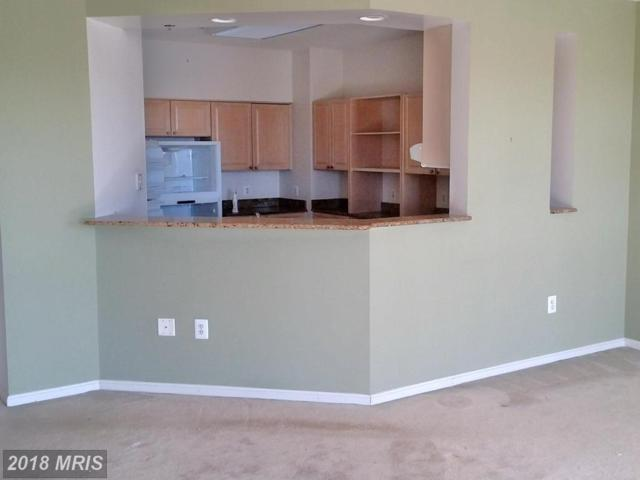 3210 Leisure World Boulevard N #919, Silver Spring, MD 20906 (#MC10176001) :: Pearson Smith Realty