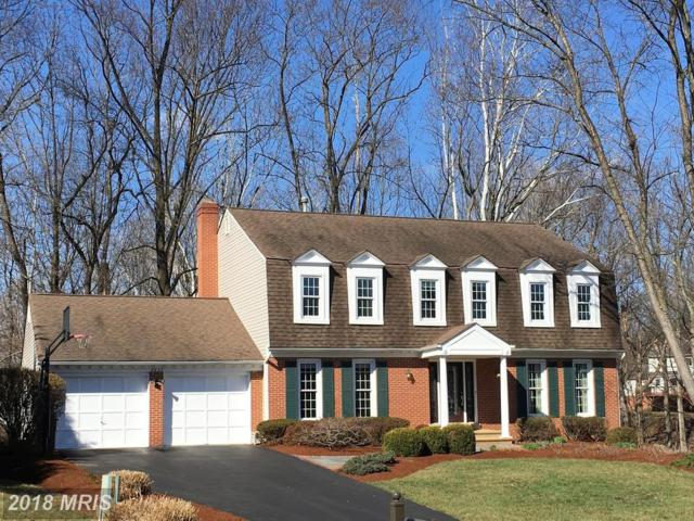 9837 Korman Court, Potomac, MD 20854 (#MC10178418) :: Dart Homes