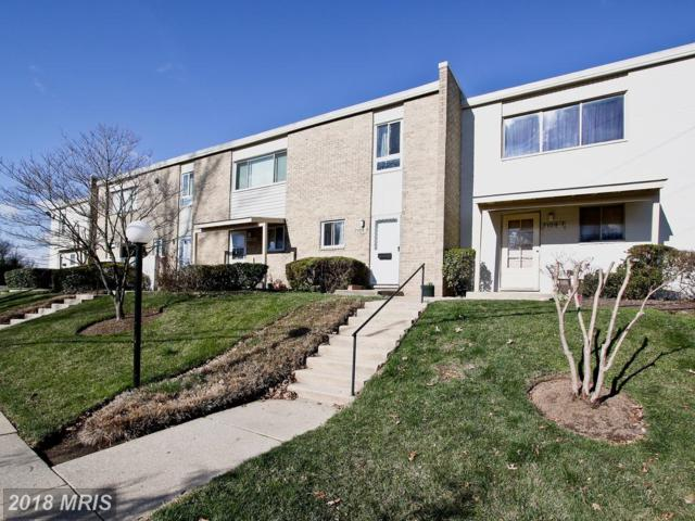 3109 University Boulevard 3109F-6, Kensington, MD 20895 (#MC10180469) :: Dart Homes