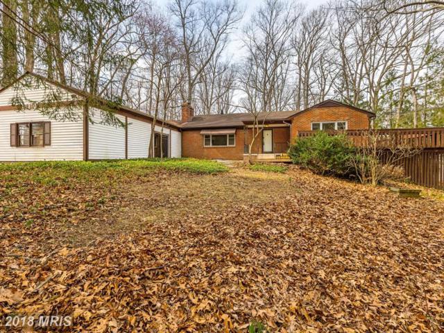 16310 Black Rock Road, Germantown, MD 20874 (#MC10182780) :: Dart Homes
