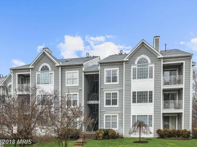 20408 Shore Harbour Drive 5-F, Germantown, MD 20874 (#MC10184648) :: The Katie Nicholson Team