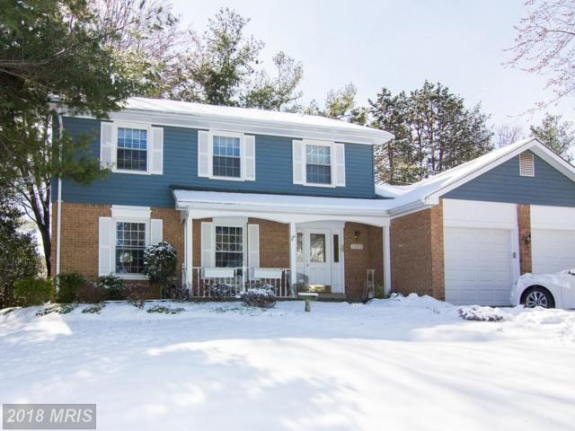 1509 Allview Drive, Rockville, MD 20854 (#MC10185258) :: Dart Homes