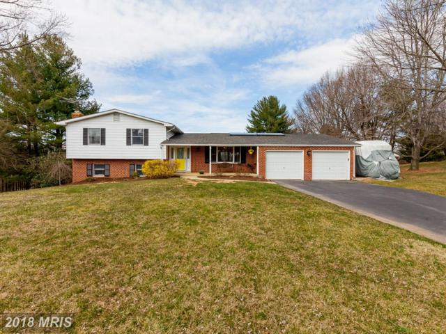 14315 Sugarloaf Vista Drive, Clarksburg, MD 20871 (#MC10185827) :: The Katie Nicholson Team