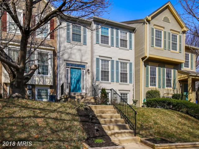 18517 Cherry Laurel Lane, Gaithersburg, MD 20879 (#MC10186504) :: The Withrow Group at Long & Foster