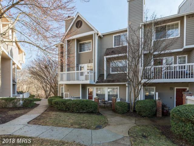 5712 Chapman Mill Drive #100, Rockville, MD 20852 (#MC10188845) :: The Sebeck Team of RE/MAX Preferred