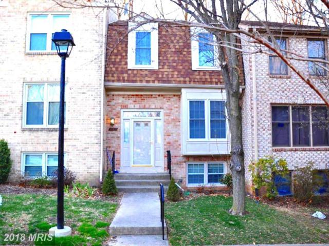 10643 Pine Haven Terrace, Rockville, MD 20852 (#MC10189972) :: Keller Williams Pat Hiban Real Estate Group