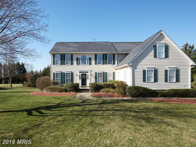 14 Grey Pebble Court, Darnestown, MD 20874 (#MC10195950) :: Keller Williams Pat Hiban Real Estate Group