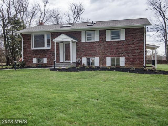15717 Allnutt Lane, Burtonsville, MD 20866 (#MC10200436) :: RE/MAX Executives